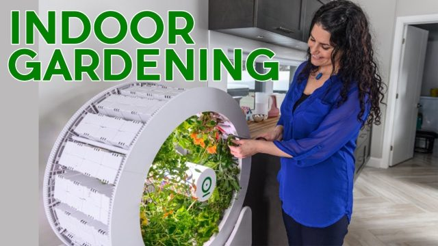 3 New Smart Indoor Gardening technologies 2019 – AMAZING INVENTIONS