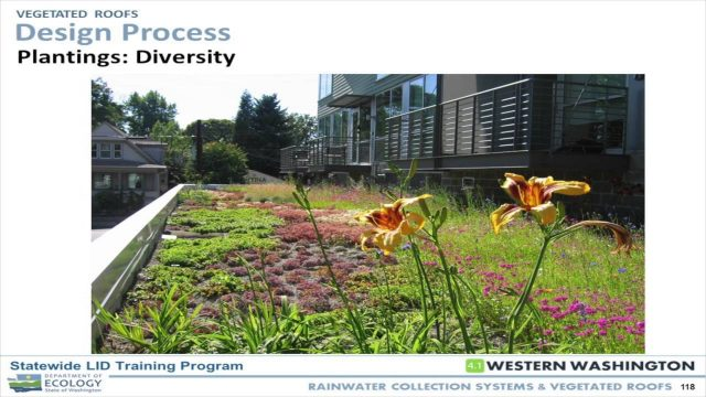 8  of 9: Intermediate LID Design: Rainwater Collection Systems and Vegetated Roofs:  Module 3.5