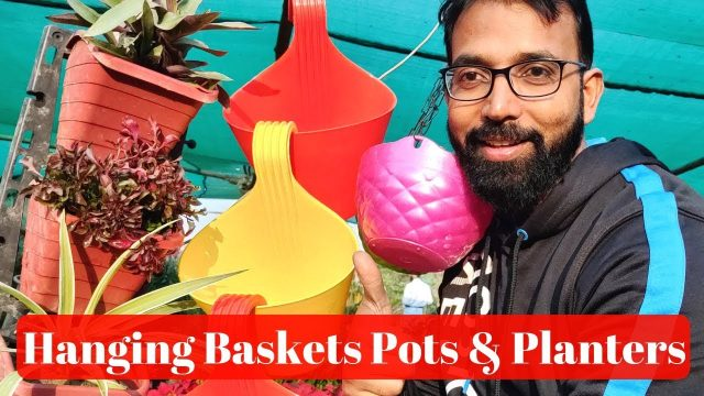 Hanging Basket | Buy Pots & Planters | Plastic Hanging Pot at Best Price for Nursery Plant