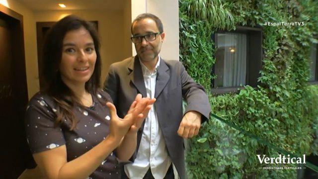 Entrevista TV3: Jardín vertical para hoteles | Verdtical