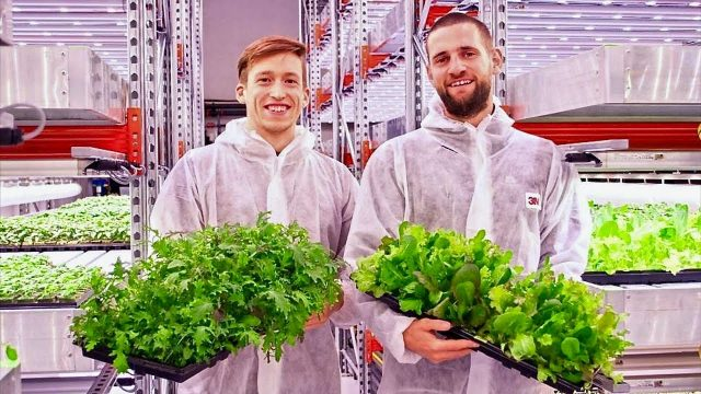 Underground Farms Produce Over 2 Tons of Food Per Month