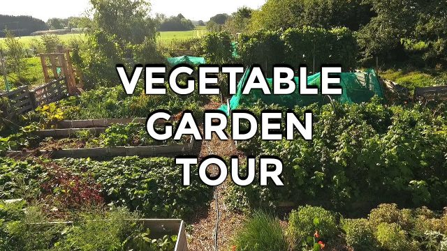 Vegetable Garden Tour (Autumn 2018)