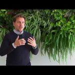 "Jardines verticales de la empresa ""Terapia Urbana"""