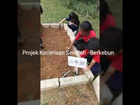 Project Beautifying School – Gardening