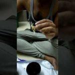 Saffron (Kesar) using Hydroponics at home – Part 1