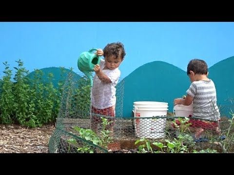 Buhay sa Ameika/Pinoy Abroad: Kids help out in the garden Fil-Am Kids
