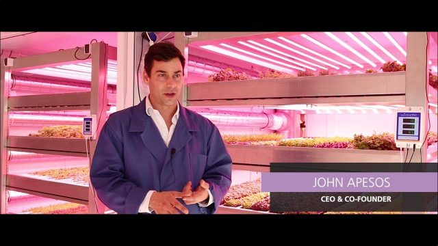 Vertical Farming, LEDs and the Flavor of Leafy Greens (GROWx Vertical Farm, Amsterdam)