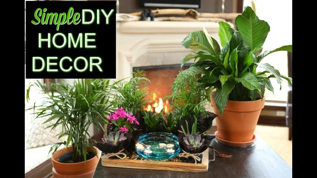 Simple DIY Home Decor | 'The Plant Platter' | Indoor Gardening