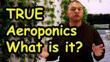What is true aeroponics?