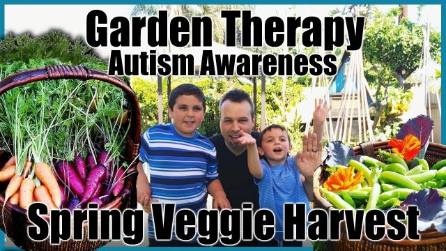 Garden Therapy // Autism Awareness // Spring Vegetable Harvest // Gardening with Kids