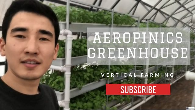 Vertical Farming | Aeroponics Greenhouse