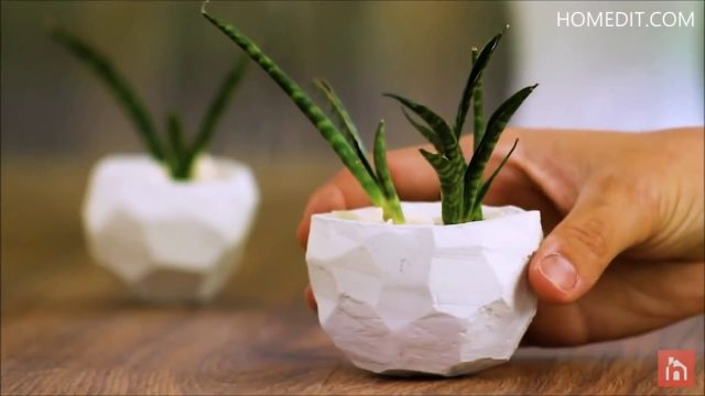 Top 10 Cute And Creative DIY Planters