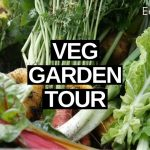 Homestead VEGETABLE Garden Tour (Easter 2019)