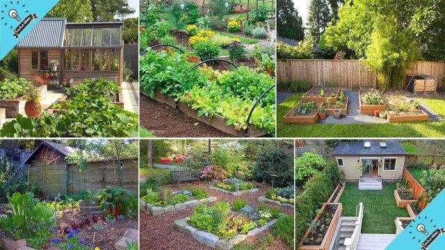 100+ Amazing Backyard Vegetable Garden Ideas! You'll Love | John Ideas