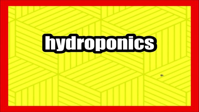 Meaning of hydroponics