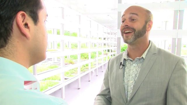 High-tech indoor farm promises 'safer' produce for Las Vegas restaurants
