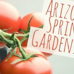 Arizona Gardening