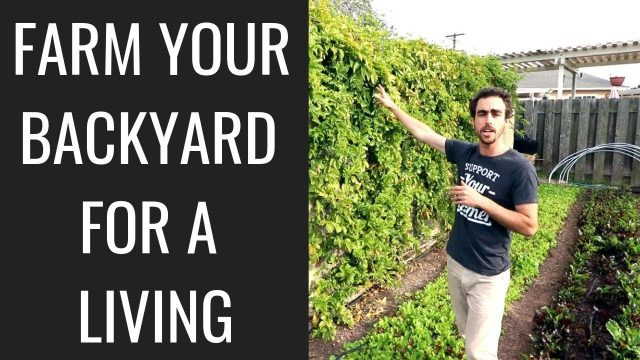 Backyard Farming: 2 Year Market Garden Update of Nature's Always Right Farms