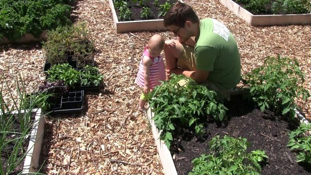 Getting Kids Involved In The Garden At The Earliest Possible Age