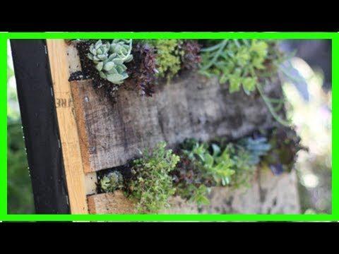 Cómo hacer un pequeño jardín vertical con pallet