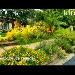 Travis County Master Gardeners garden designs|Central Texas Gardener