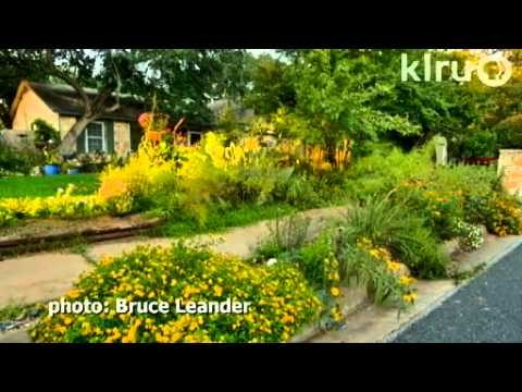 Travis County Master Gardeners garden designs|Central Texas Gardener