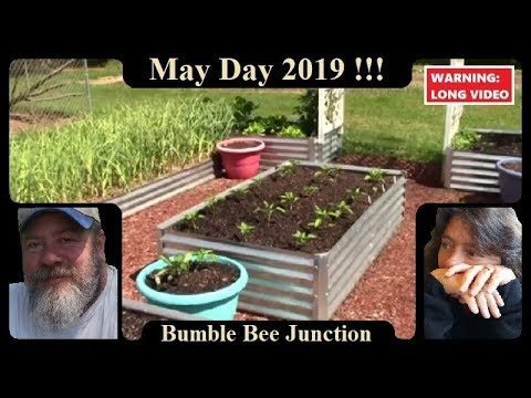 Raised Bed Vegetable Gardening | May Days Garden Update