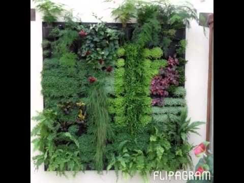 Flipagram – Flowall Indoor Vertical Gardens