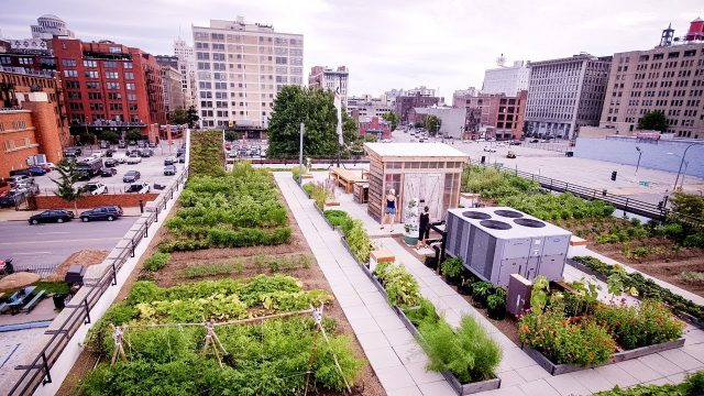 FOOD ROOF Farm by Urban Harvest STL – Project of the Week 3/19/18