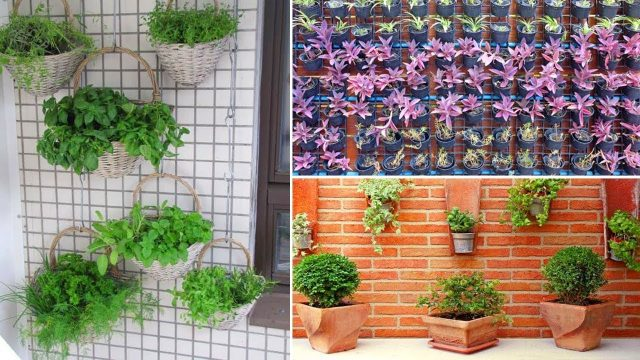50+ OF THE BEST VERTICAL GARDENING IDEAS | Garden Ideas
