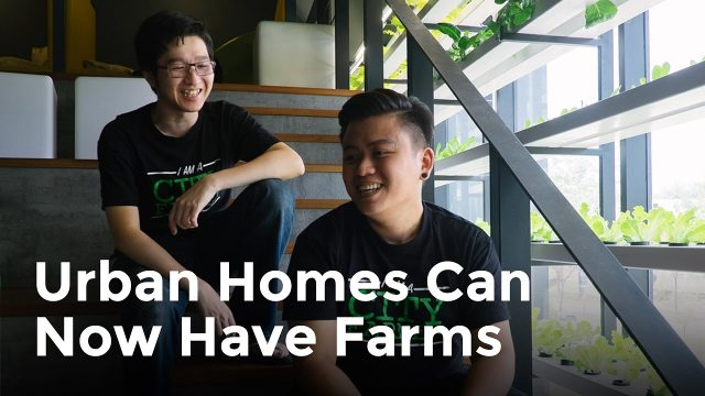 Urban Homes Can Now Have Farms | Jayden & Johanson From CityFarm Malaysia