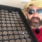 Learn How to Grow seeds indoors with Jiffy  Seed Starter Peat Pellets Tips on seed Germination