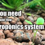 Why you need an ebb and flow hydroponics system