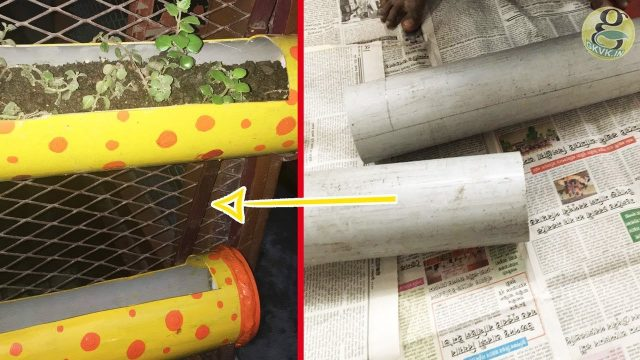 Gardening DIY: Vertical Planters / Pots at Home with PVC Pipes