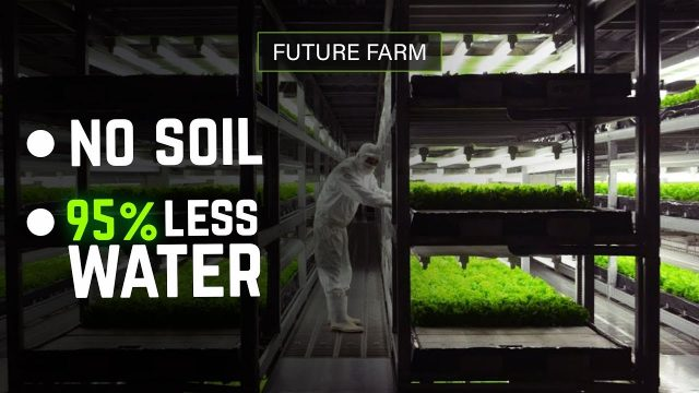 This Future Farm Uses No Soil and 95% Less Water