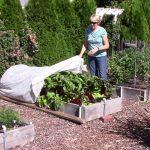 Everyone Can Grow a Garden (2018) #19 Vegetable Garden Tour – July