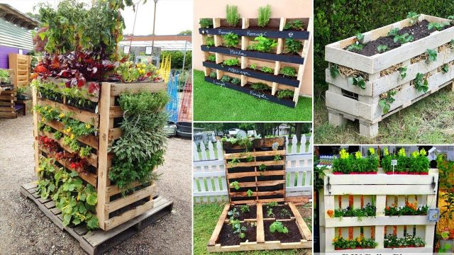 43+ Gorgeous DIY Pallet Garden Ideas to Upcycle Your Wooden Pallets