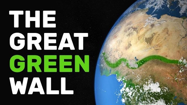 The Great Green Wall Uniting Africa | United Nations Ep 3