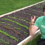 Grow 500% MORE Vegetables in 5 Times LESS Space!