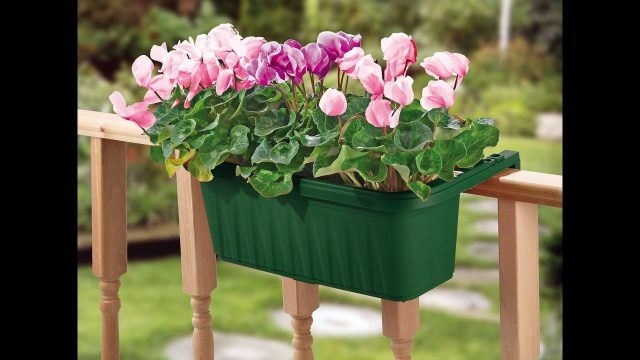 "24"" Adjustable Railing Planter from Apollo Exports"