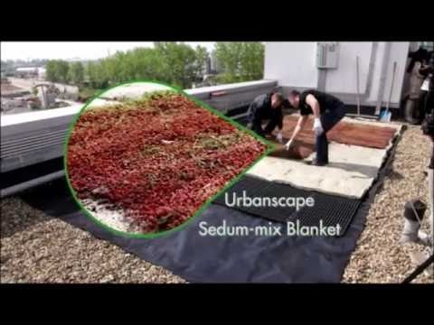 Urbanscape – From A.M.A. – Green Roof Installation Time Lapse
