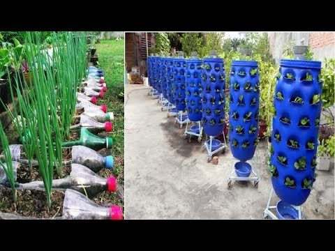 90 Beautiful Garden ideas Using Old Plastic Bottles – DIY Garden Ideas