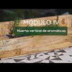 Jardines Verticales y Cuadros Vivos: Aromáticas -UNC- UPV- Campus Virtual