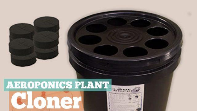 Aeroponics Plant Cloner // Indoor Gardening & Hydroponics