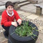 RHS School Gardening Team of the Year 2019 – Downlands Community School (Finalist)