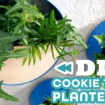 Turn Old Cookie Tins Into Wall Planters – HGTV Handmade