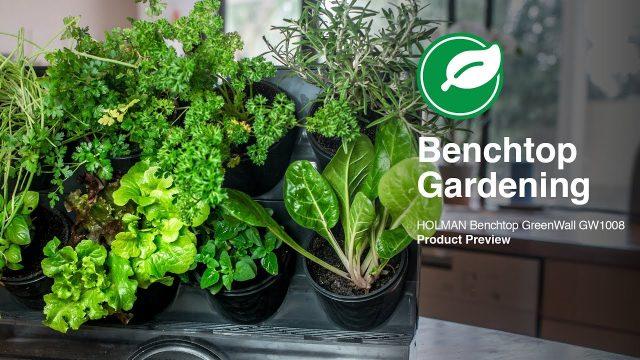 Holman Benchtop GreenWall Kit