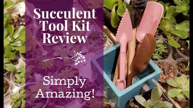 Succulent Tool Kit Review – 15 Piece Set – Indoor Gardening Tools – Giveaway Closed