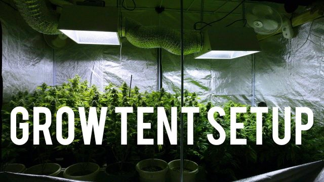 Complete 4×8 Grow Tent Setup For Growing Cannabis! – Indoor Garden