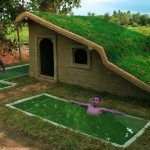 Add Swimming Pool For Roof Grass House In Wild